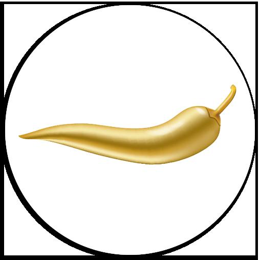 Tayo Logo Partner